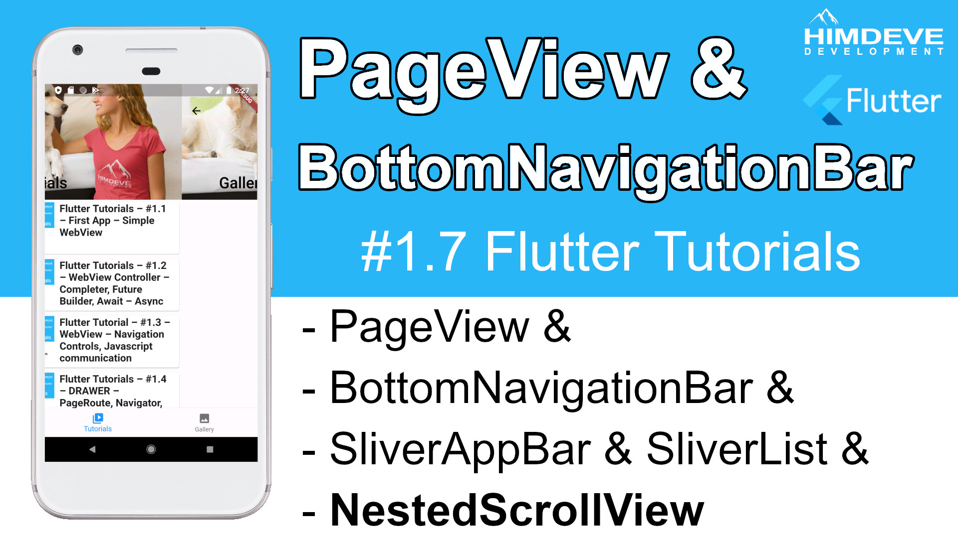 #1_7 pageview Flutter Tutorial